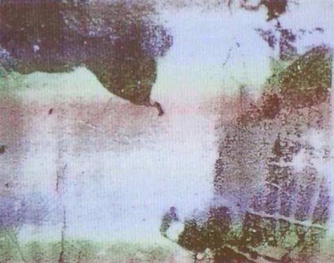 ¿Qué ves en la imagen?