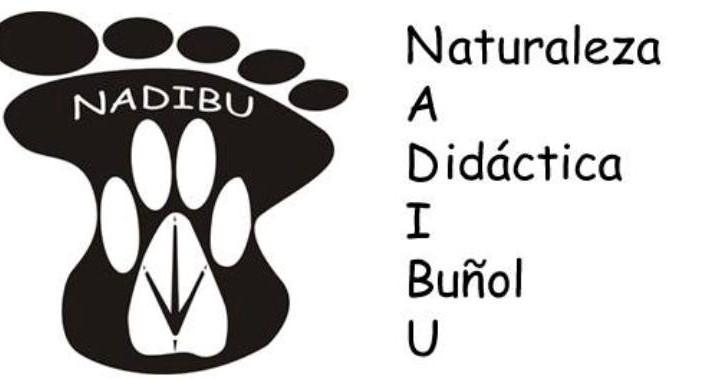 Buñol pone en marcha un proyecto medioambiental en los tres colegios de la localidad