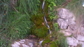 Fuente de La Teja