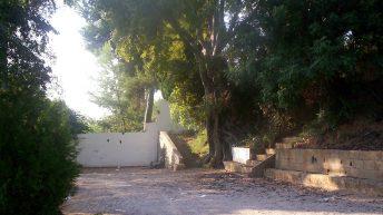 La Fuente del Ciprés