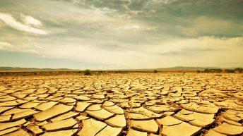 La sequía ¿una vieja conocida?