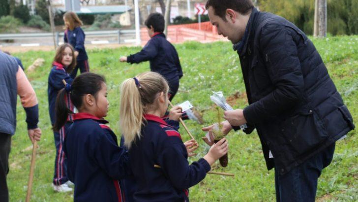 """Los alumnos de los centros de Cheste se vuelcan con la celebración del """"Día del árbol"""""""