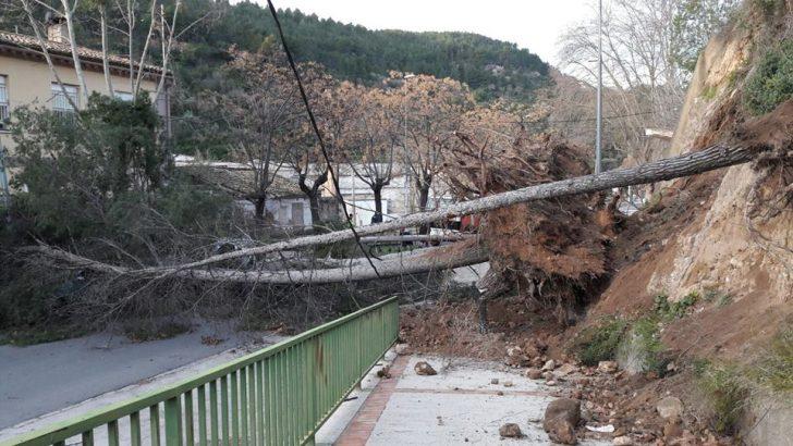 Las imágenes de los destrozos causados por el fuerte viento #Abril2017