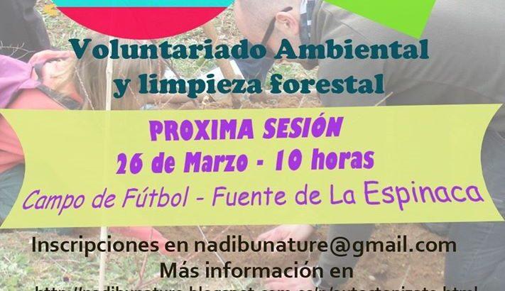 Nadibu organiza una limpieza forestal este domingo en la Fuente de La Espinaca de Buñol