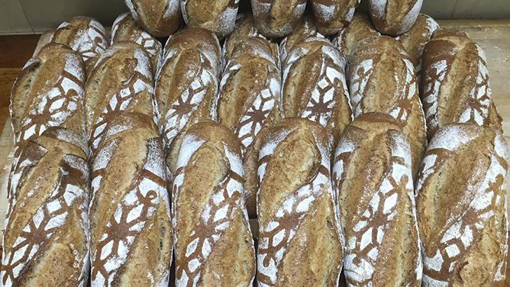 ¿Qué pasa con el pan?