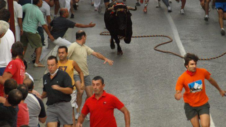 Todo listo en Chiva para las Fiestas del 'Torico' de la Cuerda