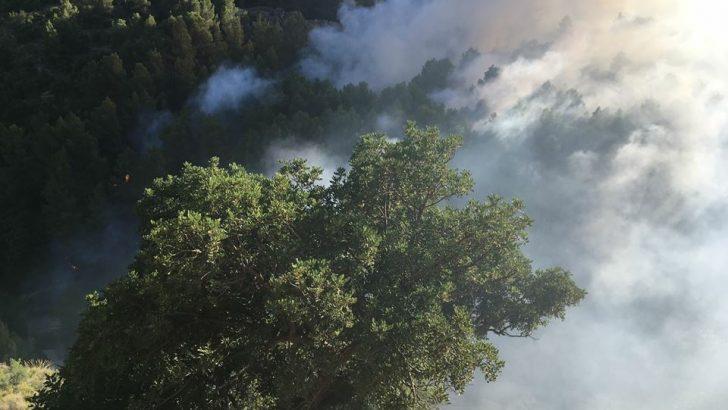 """Estabilizado el incendio que ha afectado al paraje de """"La Jarra"""" en Buñol"""