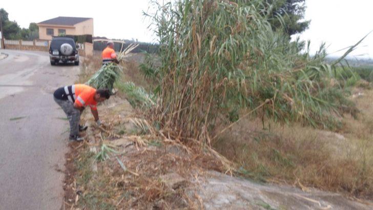 Plan de choque para la limpieza y desbroce en las urbanizaciones de Chiva