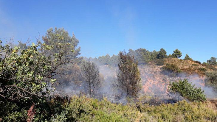 """Los servicios de emergencia sofocan un pequeño incendio en la partida del """"Rincón del Muerto"""" en Buñol"""