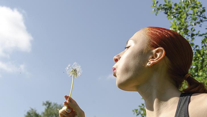 La primavera y las alergias